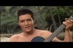 Elvis---No-More-in-Blue-Hawaii.mp4 auf www.funpot.net
