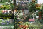 Alles-wäre-ganz-einfach-und-schön.pps auf www.funpot.net